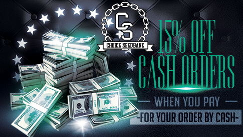 15% Off Cash Orders