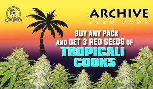 Archive Seeds promotion