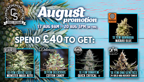 The Choice August Promotion