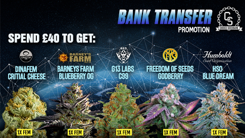 Bank Transfer Promotion