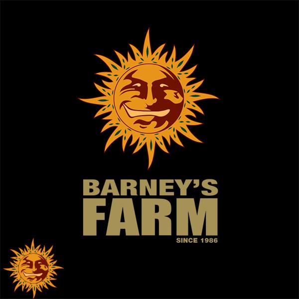 Barneys Farm Seeds Auto Wedding Cake