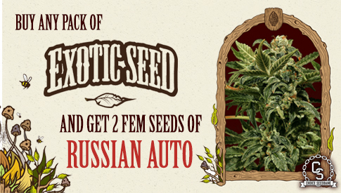 Exotic Seed Promotion