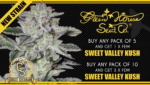 Greenhouse seeds Promotion