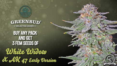 GreenBud Promotion