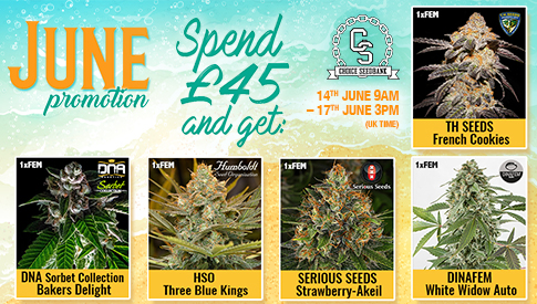 Choice June Promotion