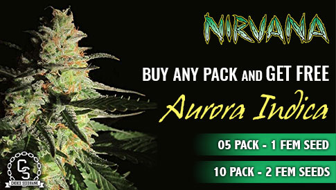 Nirvana Seeds Promotion