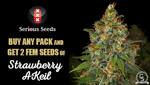 Serious Seeds Promotion