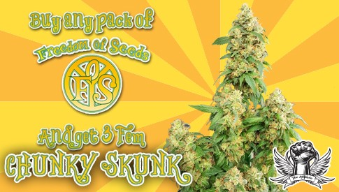 Freedom Of Seeds Chunky Skunk Promo