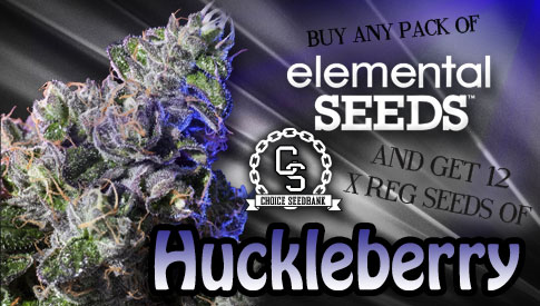 Elemental Seeds Huckleberry Promo