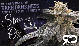 Rare Dankness Seeds Promotion