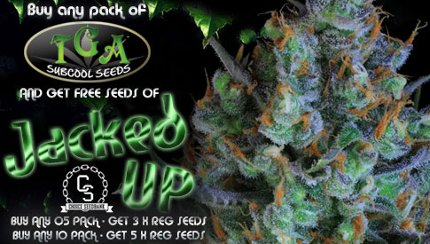 TGA Subcool Seeds Promotion