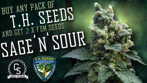 T.H. Seeds Promotion SAGE 'N' SOUR