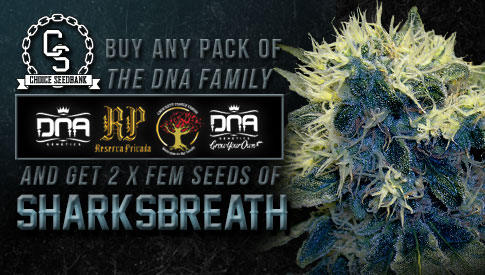 DNA Family Sharksbreath promo