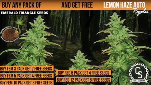 Emerald Triangle Seeds Promotion