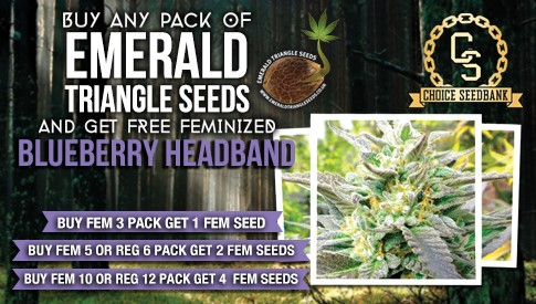 Emerald Triangle Promotion