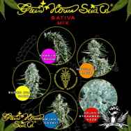 Green House Seeds Sativa Mix