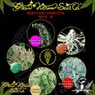Green House Seeds Sativa Indica Mix A