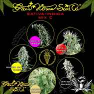 Green House Seeds Sativa Indica Mix C