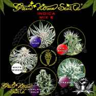 Green House Seeds Indica Mix E