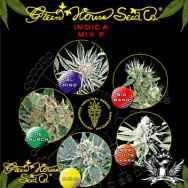 Green House Seeds Indica Mix F