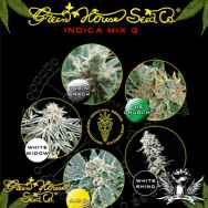 Green House Seeds Indica Mix G