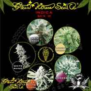 Green House Seeds Indica Mix H