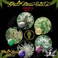 Green House Seeds Indica Mix I