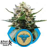 Royal Queen Seeds Royal Medic CBD