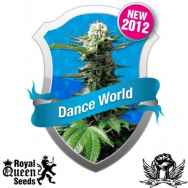 Royal Queen Seeds Dance World CBD
