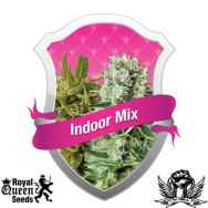Royal Queen Seeds Indoor Mix