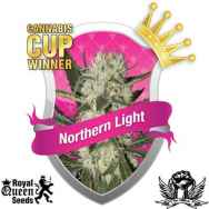 Royal Queen Seeds Northern Light