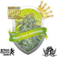 Royal Queen Seeds Royal Haze AUTOFLOWERING