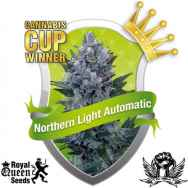 Royal Queen Seeds Northern Lights AUTOFLOWERING