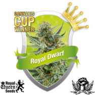 Royal Queen Seeds Royal Dwarf Autoflowering