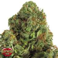 Heavyweight Seeds Midnight Mass