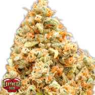 Heavyweight Seeds Monster Profit