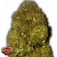 Heavyweight Seeds Skunky Monkey AUTO