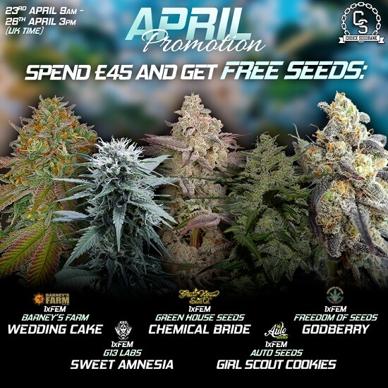 The Choice Seedbank Newsletter - Awesome April promos and offers!
