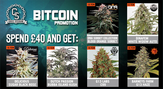 Bitcoin Payment Promotion at The Choice Seed Bank