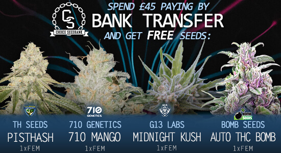 Bank Transfer Payment Promotion at The Choice Seed Bank